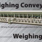 Weigh Belts